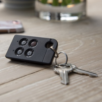Savannah security key fob
